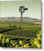 California Wine Country Metal Print