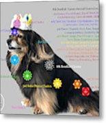 Canine Chakras Metal Print