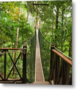 Canopy Walkway. Taman Negara National Metal Print