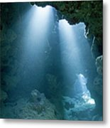 Caribbean Sea, Cayman Islands, Grand Metal Print