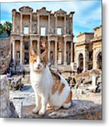 Cat In Front Of The Library Of Celsus Metal Print