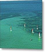 Catamarans, Catseye Bay, Hamilton Metal Print