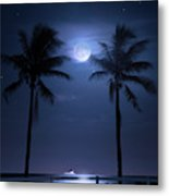Catch The Moon Metal Print