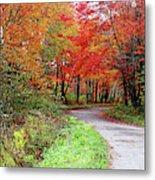Chikanishing Road In Fall Metal Print