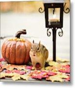 Chipmunk In The Autumn Metal Print