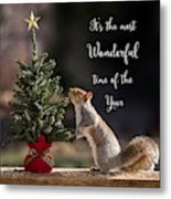 Christmas Squirrel Most Wonderful Time Of The Year Square Metal Print