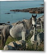 Cleggan Connemara Metal Print
