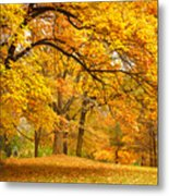 Collection Of Beautiful Colorful Autumn Metal Print