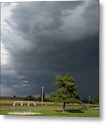 Color In The Storm Metal Print