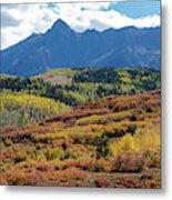 Colorado Color Bonanza Metal Print