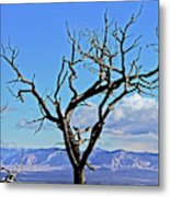 Colorado National Monument Colorado Blue Sky Red Rocks Clouds Trees 2 10212018 2842.jpg Metal Print