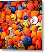 Colorful Tiny Pumpkins Metal Print