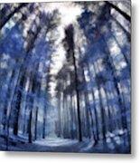 Colorful Trees Iv Metal Print