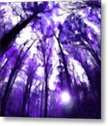 Colorful Trees X Metal Print