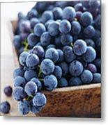 Concord Grapes Metal Print