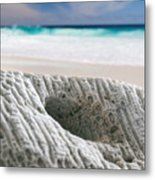 Coral By The Sea Metal Print