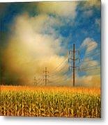 Corn Field At Sunrise Metal Print