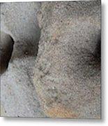 Creatures Of Sand Metal Print