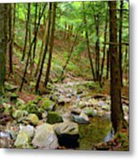 Creek In Massachusetts 2 Metal Print