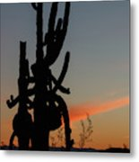 Dancing Saguaro Cactus Metal Print