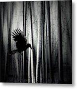 Darker - Raven Metal Print
