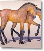Darling Foal Pair Metal Print