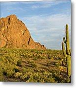 Desert Mountain Cactus Classic Metal Print