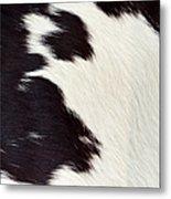 Designer Fur Metal Print