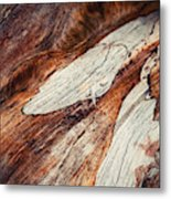 Detail Of Abstract Shape On Old Wood Metal Print