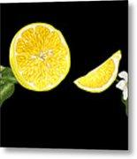 Digital Citrus Metal Print