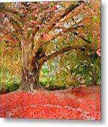 Digital Watercolor Painting Of Beautiful Autumn Fall Nature Fair Metal Print