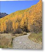 Dirt Road In The Elk Mountains, Colorado Metal Print