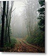 Dirt Road Leading Through Foggy Forest Metal Print