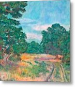 Dirt Road Near Rock Castle Gorge Metal Print