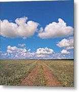 Dirt Road On Prairie With Cumulus Sky Metal Print