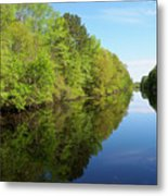Dismal Swamp Canal In Spring Metal Print