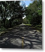 Dixie Highway In Micanopy Florida Metal Print
