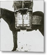 Donkey Carrying Portable Telegraph Metal Print