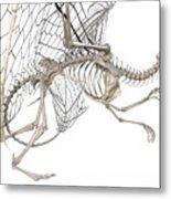 Dragon Skeleton  Metal Print