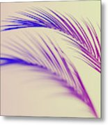 Duotone Background Of Tropical Palm Leaves Metal Print
