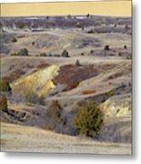 Early Spring Prairie Reverie Metal Print