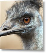 Emu Print 9092 Metal Print