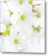Ethereal Blossoms Metal Print