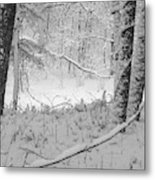 Evening Snow Metal Print