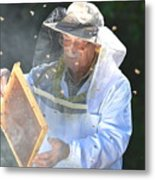 Experienced Senior Beekeeper Making Metal Print