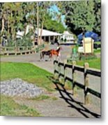 Fairgrounds In Rhinebeck New York Metal Print