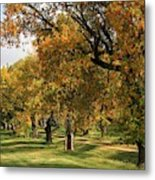 Fall Ave Metal Print