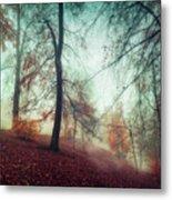 Fall Feeling Metal Print