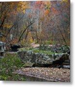 Fall On The Kings River Metal Print