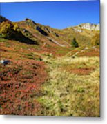 Fall On The Mountains Metal Print